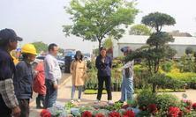 专题报道——从夏溪花木市场看花境产业供求酿变下的新出路