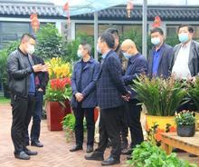 重庆市璧山区副区长敖斌率队考察夏溪花木市场