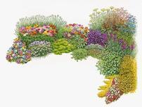 花境產業的福利來了,您心動了嗎?