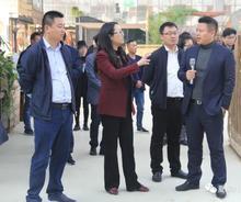 上海崇明团区委书记曹崔秀参观考察夏溪花木市场