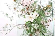 園藝嘉年華:四大名師會打造怎樣的花藝生活館?