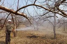 12月园林养护工作较其他季节要少,6大注意事项,请查收