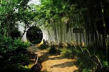 古典园林,植物意境的营造,究竟应该如何进行植物配置的意境营造呢?