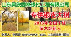 山东昊欣园林绿化工程有限公司图片