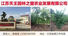 江苏天王园林之窗农业发展有限公司图片