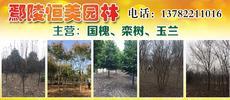 鄢陵恒美园林