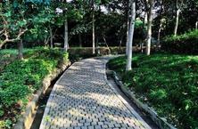 园林景观设计中的无障碍设计,无障碍设计中的相关概念及其必要性、可行性