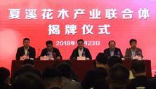 夏溪花木产业联合体于2018年10月23日正式成立,大会共分为两个阶段