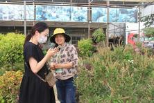优质商户:王芳——识别用户需求卖植物