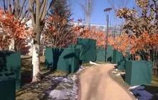 防寒是苗木安全越冬养护的重要环节,植物过冬也可以这么讲究!