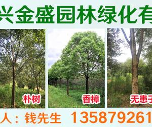 浙江長興金盛園林綠化有限公司