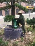 园林养护滴灌袋可移动滴灌袋,为您省心省力省钱