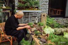 我在夏溪花木市场做园子,访东篱草堂的主人庭院景观设计师印文斌
