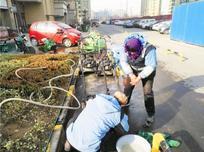 时值春节和元宵节传统节庆,需提前做好园林养护的准备工作,二月北方地产园林养护要点