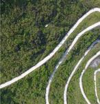 2019年计划造林1亿亩,草原建设1.16亿亩,苗木人的机遇在哪里?