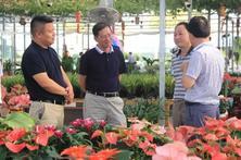 國家林草局駐上海專員辦領導蒞臨夏溪花木市場參觀考察