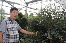 徐春华:不只把花卉绿植当产品卖