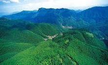 大规模国土绿化行动持续推进,全年计划完成造林1.01亿亩