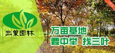 江苏三叶园林股份有限公司图片
