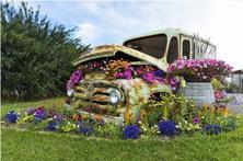 """展商聚焦:来园艺嘉年华,看美丽岛园艺如何用花境植物""""换装""""?"""