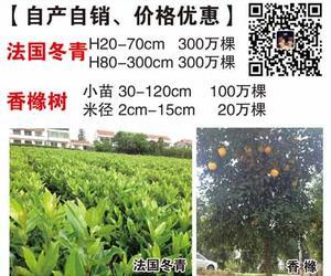 张家港市禾苑园林绿化有限公司