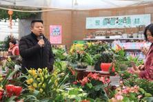 陕西省安康市农企领导走进夏溪花木市场进行参观考察!