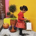 快看,兒童園藝市場可以這么玩