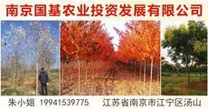 南京国基农业投资发展有限公司图片