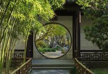 园艺嘉年华:专类园之大禹竹园,竹子的新表现手法请看这里