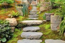 何为杂木庭院?自然 !绿色!