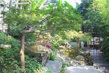 植物景观设计的几大构景手法你了解吗?