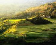 土壤肥力与土壤物质组成有联系,苗木人必知的土壤知识,史上最全!