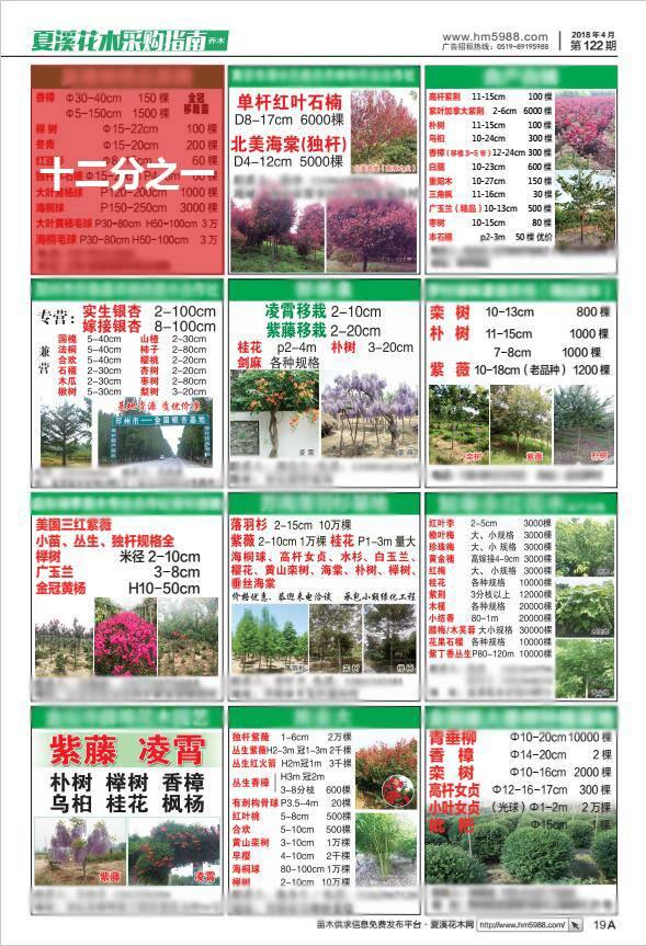夏溪花木采购指南1/12版广告
